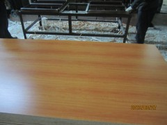 批发供应 刨花板 三聚氰胺双面贴刨花板 家具板