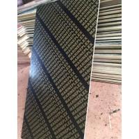 供应优质建筑木模板 竹胶板 多层板 18053973777