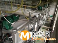 临沂肉鸡笼生产厂家13969997122