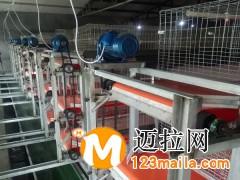 临沂传送带清粪机厂家13969997122