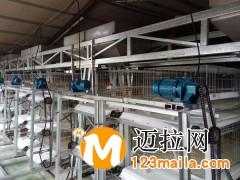 山东传送带清粪机厂家直销13969997122