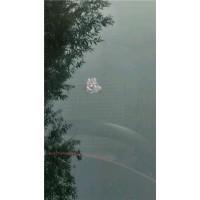 临沂专业汽车玻璃裂纹修复 15264947266