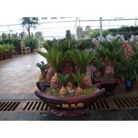 兰山区绿化用花价格13153928171
