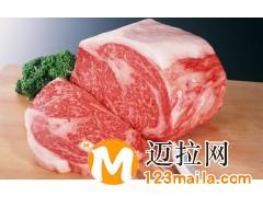 山东牛肉13734384805