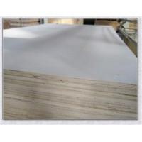 临沂多层板生产厂家13153956099