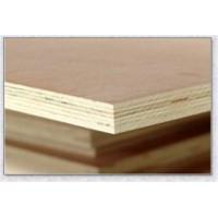 山东多层板生产厂家13153956099