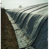 山东大棚棉被生产厂家