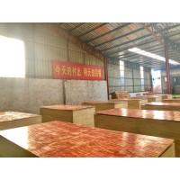 山东临沂建筑模板厂家