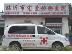 临沂宠物医院,临沂宠物诊疗,临沂宠物医院哪家好