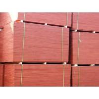 临沂建筑模板生产厂家,临沂建筑模板厂家批发价格
