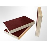 临沂建筑模板厂家,山东多层板价格